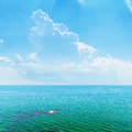 Azure sea and sky with clouds blue Stock Images