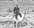 B&W photo of an Egyptian Antiquities police officer on a camel i