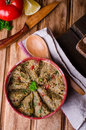 Babaganoush with tomatoes, cucumber and parsley - arabian eggplant dish or salad on wooden background. Selective focus Royalty Free Stock Photo