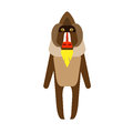 Baboon illustration of on white background Royalty Free Stock Images