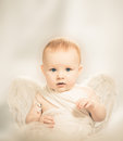 Baby angel Stock Photography