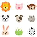 Baby Animal Faces Royalty Free Stock Photo