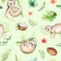 Baby animals sloth nursery seamless pattern painting. Watercolor boho tropical drawing, child tropical drawing