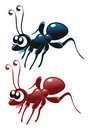 Baby Ant Royalty Free Stock Images