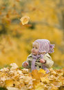 Photo : Baby in autumn leaves towards maple front