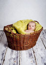 Baby in the basket Stock Photos