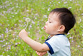 Baby blowing a dandelion Royalty Free Stock Photo