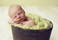 Baby boy in a bucket newborn antique planter Royalty Free Stock Photo