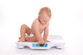 Baby boy check own weight on scales white background Royalty Free Stock Images