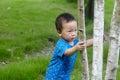 Baby boy  climbing tree Royalty Free Stock Photo