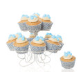 Baby boy cupcakes shower for a newborn on a white background Stock Image