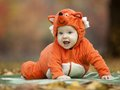 Baby boy dressed in fox costume autumn park Stock Images