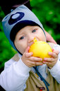 Baby boy eating big apple Stock Photo