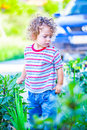 Baby boy exploring outdoor portrait of year old the surroundings of his yard Stock Photography