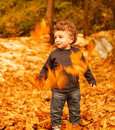 Baby boy in fall backyard Stock Images