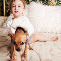 Baby boy at homeplaying with dog Stock Photos