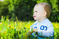 Baby boy play with dandelions Royalty Free Stock Photo
