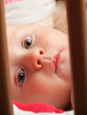 Baby boy portrait of months male child in blue eye Stock Photography