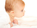 Baby boy profile Stock Photography