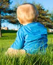 Baby boy sitting on the grass Royalty Free Stock Photo