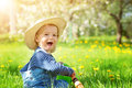 Baby boy sitting on the grass with dandelion flowers in the garden Royalty Free Stock Photo