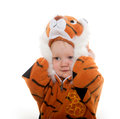 Baby boy in tiger costume cute month old a for halloween on white background Royalty Free Stock Photo