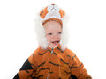 Baby boy in tiger costume cute month old a for halloween on white background Royalty Free Stock Photography