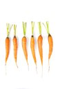 Baby carrots closeup on white background Stock Photo