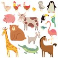 Baby cartoons wild bear, giraffe, crocodile, bird and domestic a