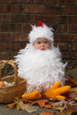 Baby Chick Royalty Free Stock Images