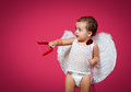 Baby cupid with a bow arrow and wings Royalty Free Stock Photos