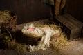 Baby doll in nativity scene Royalty Free Stock Photo