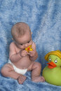 Baby and Ducks Royalty Free Stock Images