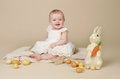 Baby easter bunny eggs beautiful sitting up on a a blanket with and Stock Photos