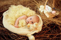 Baby in easter nest child lies with chicks Royalty Free Stock Images