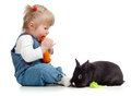 Baby eating a carrot and feeding rabbit Royalty Free Stock Photo