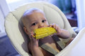 Baby eating corn Royalty Free Stock Image
