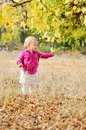 Baby in fall girl park Royalty Free Stock Image