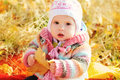 Baby fall time sitting under leaf Royalty Free Stock Photos