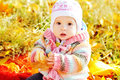 Baby in fall time sitting under with leaf Stock Images