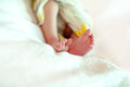 Baby feet close up at white Royalty Free Stock Photo