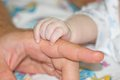 Baby fingers in father's Hands Royalty Free Stock Photo
