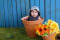 Baby in flowerpot a surrounded by flowers Royalty Free Stock Photos