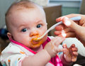 Baby Food Introduction Royalty Free Stock Images
