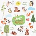 Baby Forest Animals Design Set
