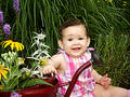 Baby in garden Royalty Free Stock Images