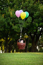 Baby girl flying in a basket on the balloons on a background of Royalty Free Stock Photo