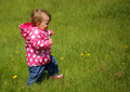 Baby girl in the park on a windy day standing grass garden spring Royalty Free Stock Images
