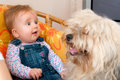 Baby girl with pet dog Royalty Free Stock Photo
