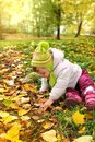 Baby girl sitting on yellow leaves Stock Photos
